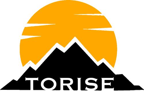 Torise