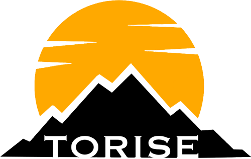 Torise logo