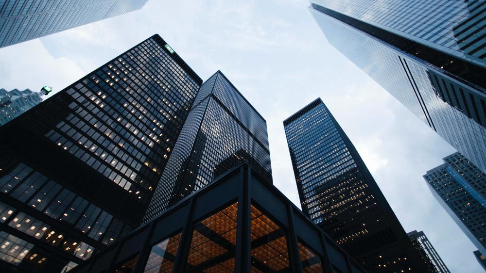 Дия Сити - новые правила игры для IT-бизнеса
